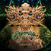 Codex VI von Shpongle