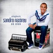 Evangeliza! (Ao Vivo) (Playback) by Sandro Narizeu