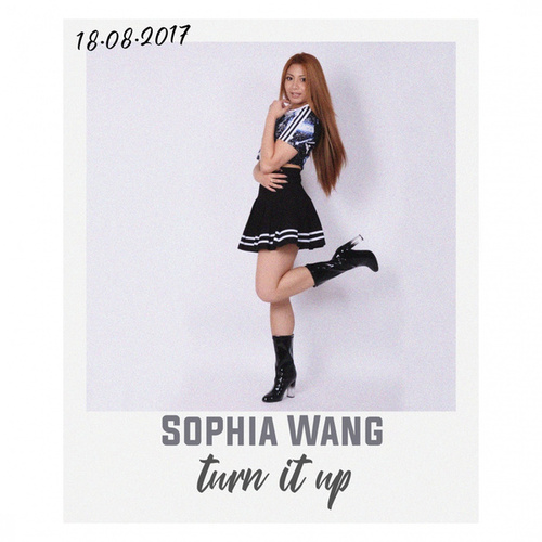 Turn it up by Sophia Mina