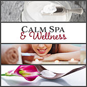 Calm Spa & Wellness (Therapy Music for Massage, Zen New Age for Deep Relaxation & Beauty Treatments, Rest for Body & Mind) by Spa Music Zone
