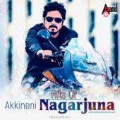 Hits of Akkineni Nagarjuna by Various Artists