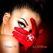 Volume VII by Kool&Klean