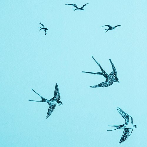 Drift of Swallows by Hirondelle