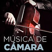 Música de Cámara by Various Artists
