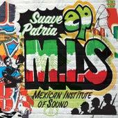 Suave Partia de Mexican Institute of Sound