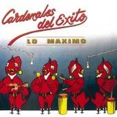 Lo Maximo '89 by Cardenales del Exito