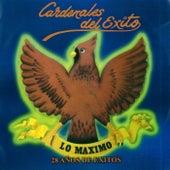 Lo Maximo: 28 Años de Exitos by Cardenales del Exito