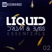Liquid Drum & Bass Essentials, Vol. 02 - EP von Various Artists