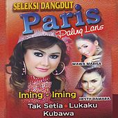 Seleksi Dangdut Paris Paling Laris by Various Artists