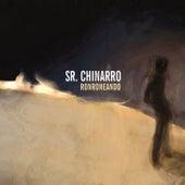 Ronroneando by Sr. Chinarro