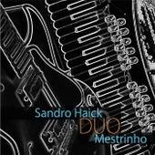 Sandro Haick e Mestrinho Duo de Various Artists