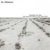 Despídete del Lago (Las Rarezas de Antonio Luque 1993-2001) by Sr. Chinarro