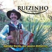 Galinha Gorda, por Pouco Dinheiro!.. de Ruizinho De Penacova