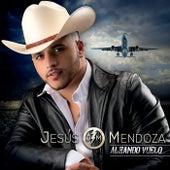 Alzando Vuelo de Jesús Mendoza