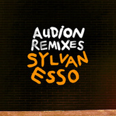 Die Young (Audion Remix) by Audion