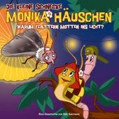 17: Warum flattern Motten ins Licht de Die kleine Schnecke Monika Häuschen