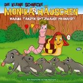 36: Warum tanzen Spitzmäuse Polonaise? von Die kleine Schnecke Monika Häuschen