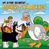 42: Warum wedeln Hunde mit dem Schwanz? von Die kleine Schnecke Monika Häuschen