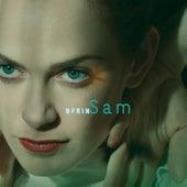 Sam by Ofrin