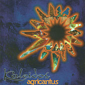 Kaleidos von Agricantus