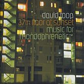 37 th fllor at sunset, music for mondophrenetic TM by David Toop