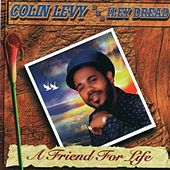 A Friend for Life von Colin Levy