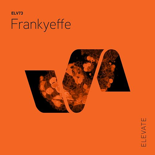 Paranormal - Single by Frankyeffe