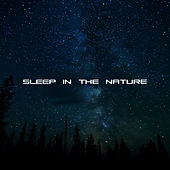 Sleep in the Nature – Relaxing Music, Full of Calmness, Nature Sounds, Music for Sleep, Deep Sleep, Lullabies de Nature Sound Collection