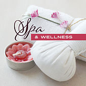 Spa & Wellness – Classic Massage, Relax, Anti Stress Sounds, Inner Balance, Tranquility de Zen Meditation and Natural White Noise and New Age Deep Massage