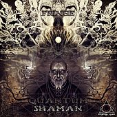 Quantum Shaman - EP by Various Artists