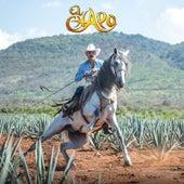 El Mago (Version Mariachi) de El Chapo De Sinaloa