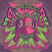 Wide Eyed Wild Ride by Twink