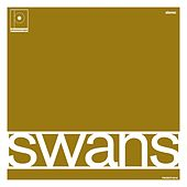 Swans by Maston