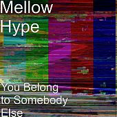 You Belong to Somebody Else de MellowHype