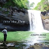Into the Flow by Joseph Akins