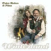 Winterland von Various Artists