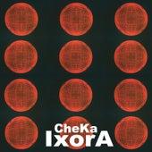 Ixora by Cheka