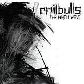 The Ninth Wave by Emil Bulls