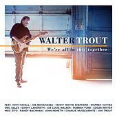 We're All In This Together de Walter Trout