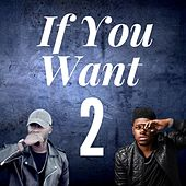 If You Want 2 (feat. Jor'dan Armstrong) by Tyshan Knight