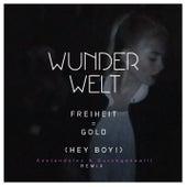 Freiheit = Gold (Hey Boy!) (Anstandslos & Durchgeknallt Remix) by Wunderwelt