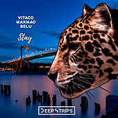 Stay by Vitaco