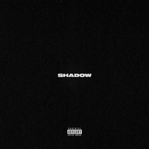 Shadow de Metrickz