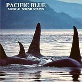 Pacific Blue (Musical Soundscapes) by Jonas Kvarnström