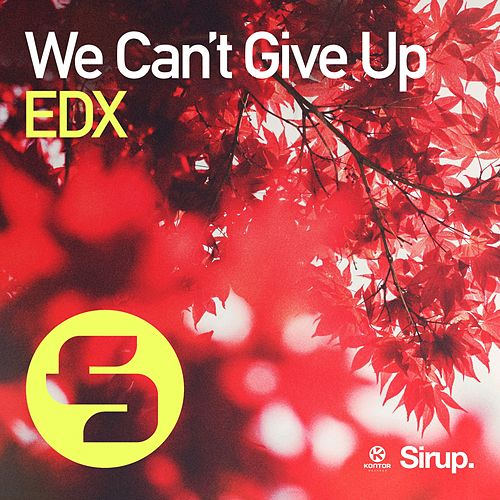 We Can't Give Up von EDX