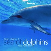 Sea of Dolphins (Musical Soundscapes) by Jonas Kvarnström