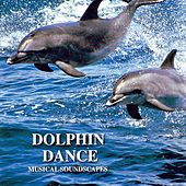 Dolphin Dance (Musical Soundscapes) by Jonas Kvarnström