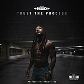 Trust the Process von Ace Hood