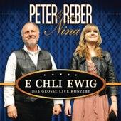 E chli ewig - Das grosse Live Konzert von Various Artists