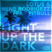 Light up the Dark (Remixes) de Rene Rodrigezz
